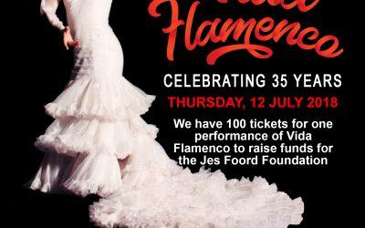 Vida Flamenco Supports JFF